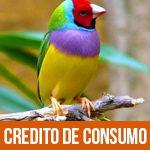 credito-consumo